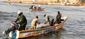 La pêche divise Sénégal et Mauritanie