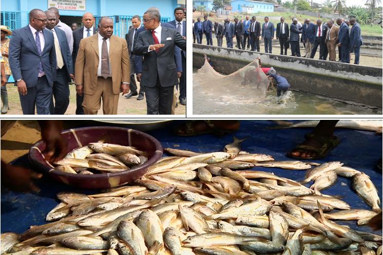 La pêche et l'aquaculture, Objectif stratégique 12 du PSGE : promouvoir une exploitation et une valorisation durable des ressources halieutiques