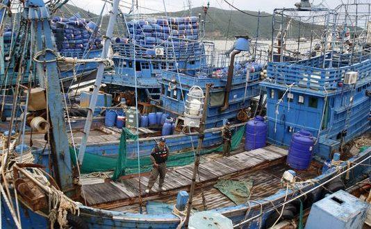 La surpêche et le déclin des ressources ont été largement sous-estimés