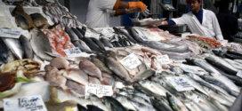 Suivre le poisson «de la mer à l'assiette» pour écarter les prises illégales des chaînes d'approvisionnement mondiales