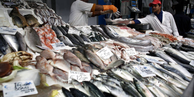 Sénégal : croissance du sous-secteur de la pêche en 2017