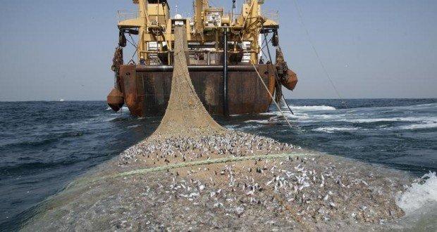 Pêche illégale: L'Afrique de l'ouest perd plus de 2 milliards $ par an