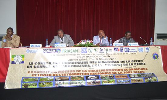 Ouverture de la réunion des Experts préparatoire à la Session extraordinaire du Conseil des Ministres de la CEEAC en charge de l'Agriculture, de l'Elevage et de la Pêche couplé à la Table Ronde régionale de mobilisation des ressources pour le financement
